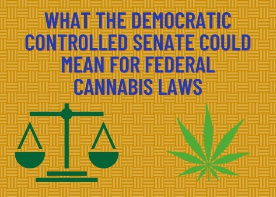 What The Democratic Controlled Senate Could Mean for Federal Cannabis Laws
